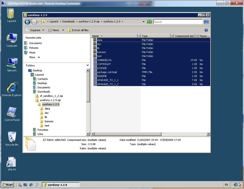 Windows Explorer - Download and unzip the project archive.
